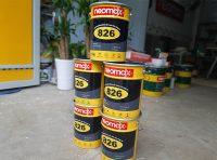 Sơn chống thấm hồ cá Koi Neomax 826 đáng mua nhất